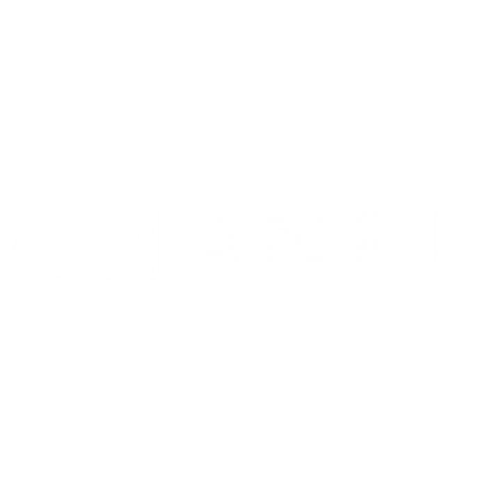 chanel2 150x150.png
